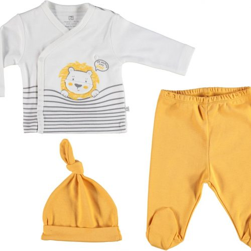 lion 3 pcs set